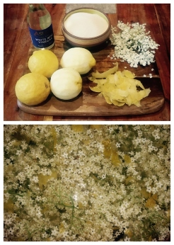Elderflower Champagne Recipe.jpg
