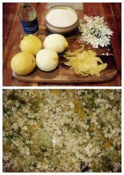 Elderflower Champagne Recipe.jpg